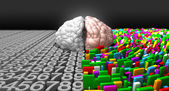 Left Brain & Right Brain — Stock Photo