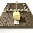 Stock Photo: Mousetrap With Cheese Front