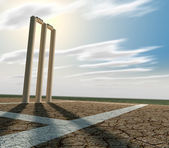 Cricket Pitch And Wickets Perspective — Stock Photo