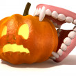 Vampire Teeth Biting Jack O'Lantern — Stock Photo