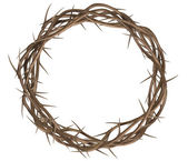 Crown Of Thorns Top — Stock Photo