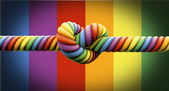 Tie The Knot Gay Marriage — Stock Photo