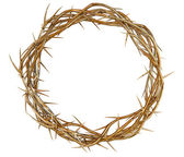 Golden Crown Of Thorns — Stock Photo
