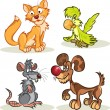Cat, dog, rat, parrot - Stock Vector
