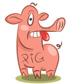 Funny stupid pig — Stock Vector
