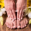Female feet and hands after spa — Stock Photo #50569871