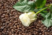 White rose on coffee, spa treatment set — Stock Photo
