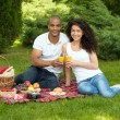 Happy international couple spending time together in park — Stock Photo #50670201