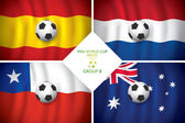 Brazil 2014 group B. Vector flag with shadow. FIFA word cup. — Stock Vector