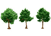 Silhouetten van stedelijke bomen — Stockvector