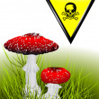 Poisonous mushrooms — Imagen vectorial