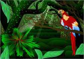 亚马逊森林 — 图库矢量图片