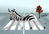 Zebra in the city — Stock vektor