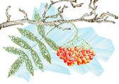 Winter frost — Stock Vector