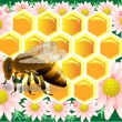 Beeswax with bee — Stock vektor #51523407