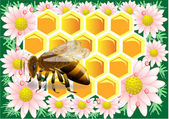 Beeswax with bee — Vettoriale Stock
