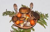 Jadalne grzyby still life — Zdjęcie stockowe