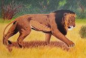 Old lion portrait — Stock Photo