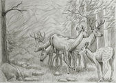 Deers family — Stock Photo