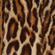 Stock Photo: Ocelot fur background