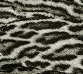 Trama di pelliccia di leopardo — Foto Stock