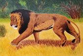 Lion in savannah — Stock Photo