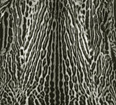Ocelot skin pattern — Stock Photo