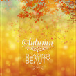 Autumn bokeh background — Stock Vector #31448479