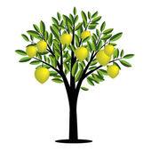 Lemon tree — Stock Vector