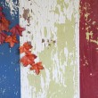 Vintage Red, White and Blue Barn Wood with Autumn Leaves - Stock Photo