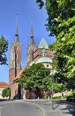Cathédrale gothique à wroclaw, pologne — Photo