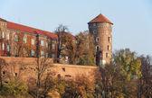 Castillo de wawel en otoño, cracovia, polonia — Foto de Stock