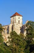 Castle tower in Tenczynek, Poland — Stock Photo