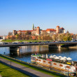 Krakow Panorama with Wawel Castle in Fall — Stock Photo