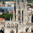 Cathedral of Burgos — Foto de Stock