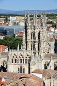 Cathedral of Burgos — 图库照片