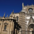 Rose of Cathedral of Seville, Spain — Stock Photo