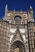 Růže katedrála v seville, španělsko — Stock fotografie