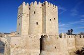 Torre de la calahorra en córdoba, españa — Foto de Stock