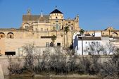 Cathedral in Cordoba, Spain. — Stock Photo