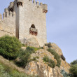 Castle of Almodovar del Rio, Andalusia, Spain — Stock Photo #23253586