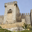 Stock Photo: Castle of Almodovar del Rio, Andalusia, Spain