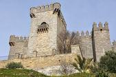 Castle of Almodovar del Rio, Andalusia, Spain — Stock Photo