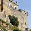Castle of Almodovar del Rio, Andalusia, Spain - Stock Photo