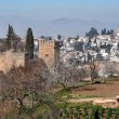 Alhambra Palace in Granada - Stock Photo