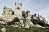 Castle of Almodovar del Rio, Andalusia, Spain — Stock Photo
