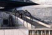 Aranha gigante — Fotografia Stock