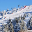 Winter resort Kopaonik, Serbia — Stock Photo