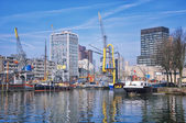 Port in Rotterdam, Netherlands — Stock Photo