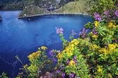 Montebello lakes in Mexico — Stock Photo